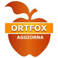 Ortfox